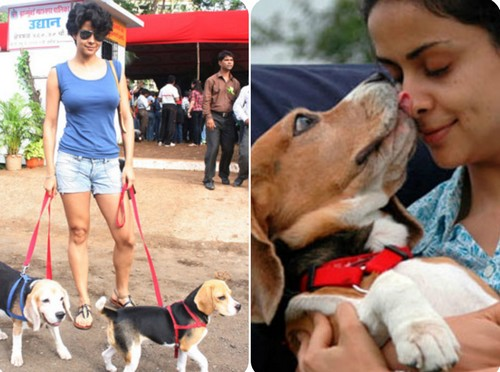 Bollywood Stars with their Pet Dogs