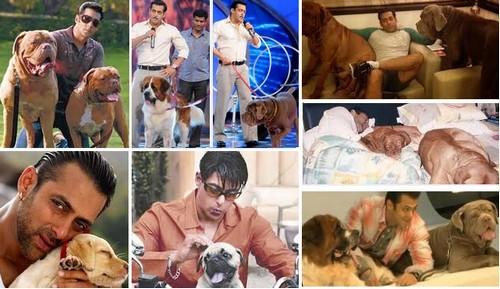 Salman Khan with dog