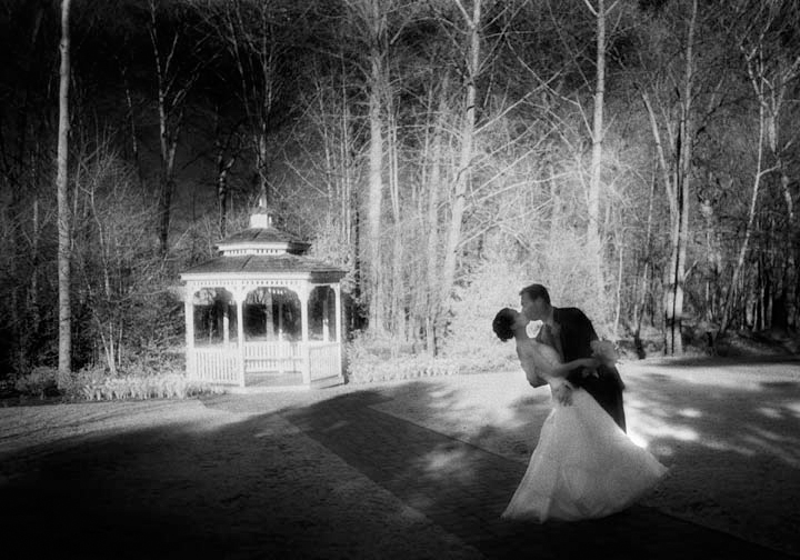 Five Years of Wedded Bliss