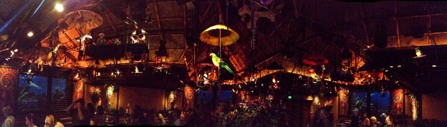Disney-Enchanted-Tiki-room-Pano-Photo