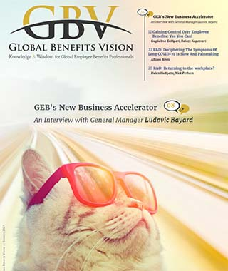 GBV-Mag60-ad320