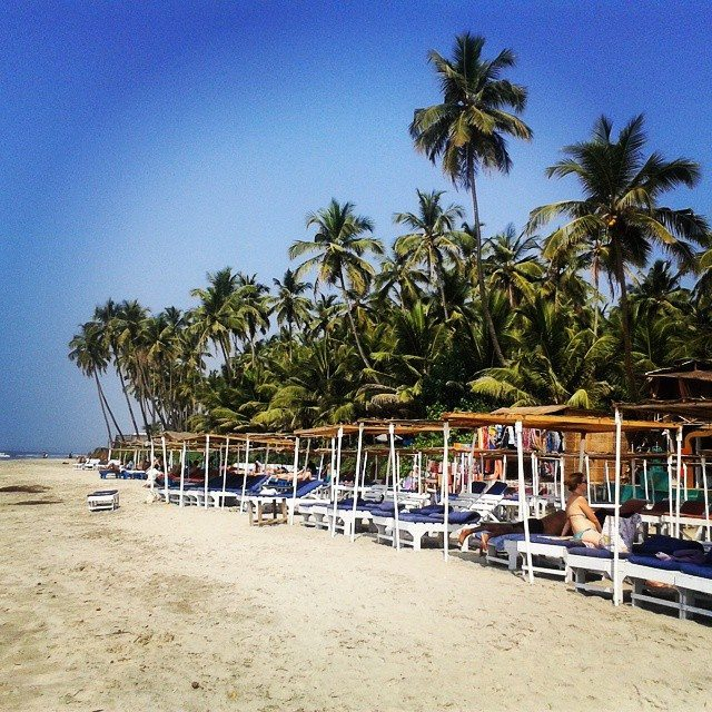 Beach bliss, yoga and nesting turtles in Mandrem, beaches in Goa