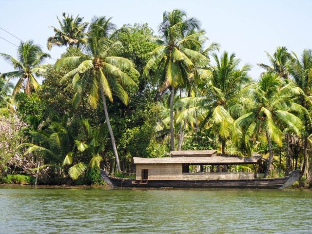 Cruising the backwaters in Kerala