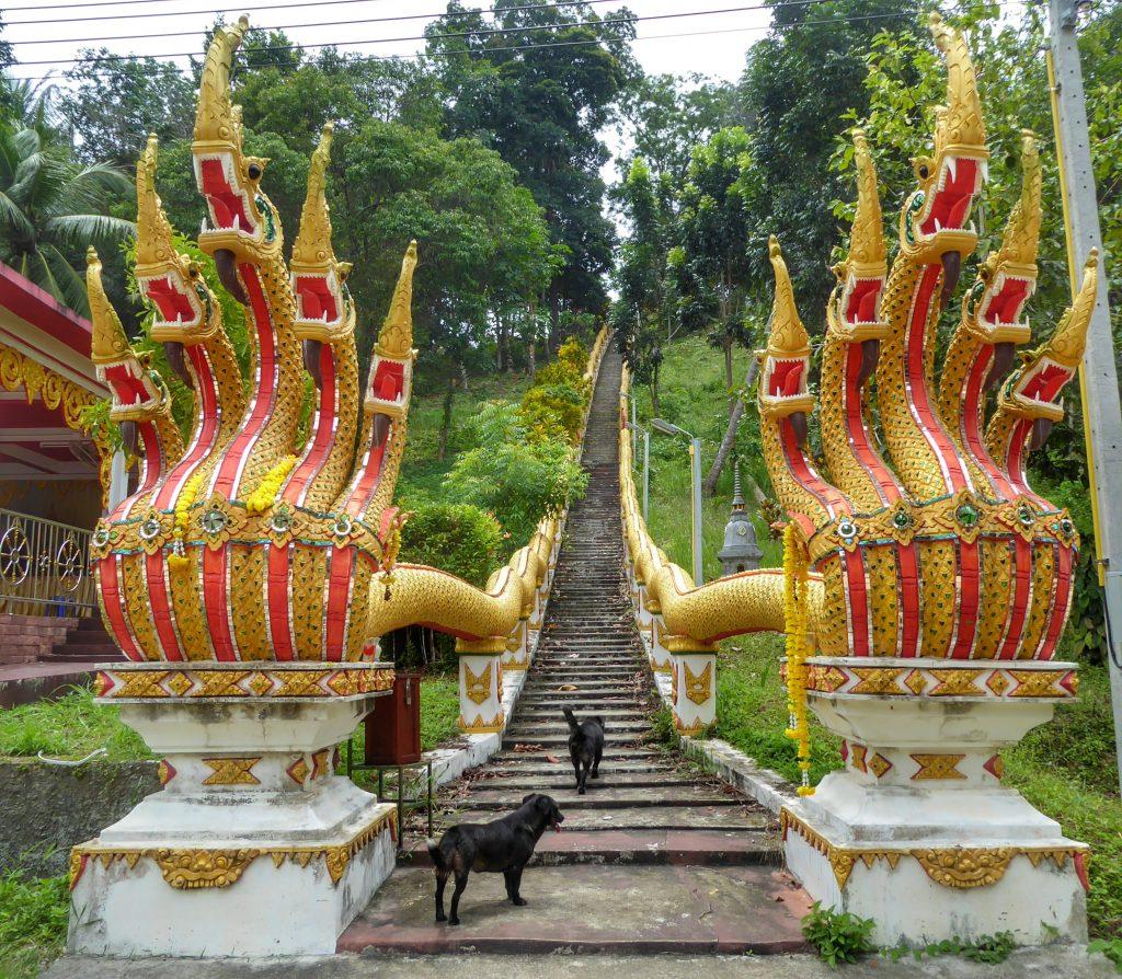 Wat Maduea Wan.