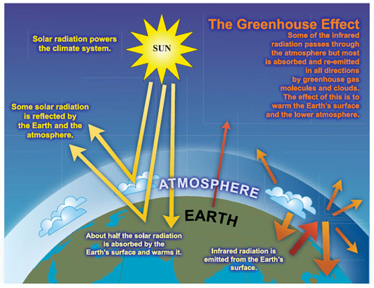 Graphs Diagrams of Global Warming and Climate