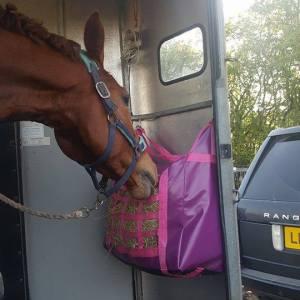 Trailer Bag Pink