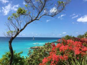 Anguilla Day Trip
