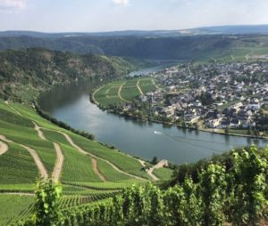 Best Rhine River cruise