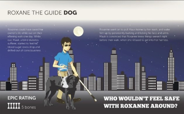 guide dog infographic