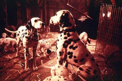 Perdy and Pongo in the 1996 adaptation of 101 Dalmatians. Photo Credit: http://movies.zap2it.com