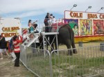 Cole Brothers Circus Elephant