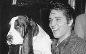 Elvis Presley and his 'Hound Dog' in 1957. Photo Credit: EPE
