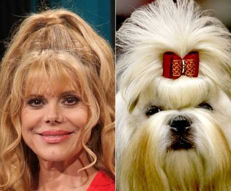 Charo or shih tzu with bow? Photo Credit: Parra/Wireimage; Verdugo/AP