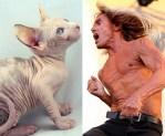 Cat And Iggy