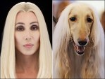 Cher And Dog