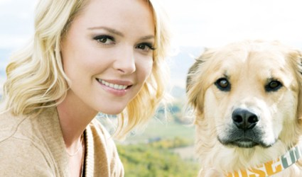 Katherine Heigl with her dog, Oscar, sporting the unique Just One collar. Photo Credit: Just One