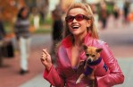 legally blonde reese witherspoon and dog