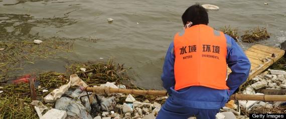 Photo credit:  http://www.huffingtonpost.com/2013/03/26/dead-ducks-china-river_n_2951711.html#slide=more285562