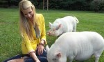 Beth Stern and pigs