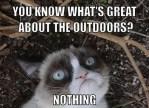 grumpy cat outdoors meme