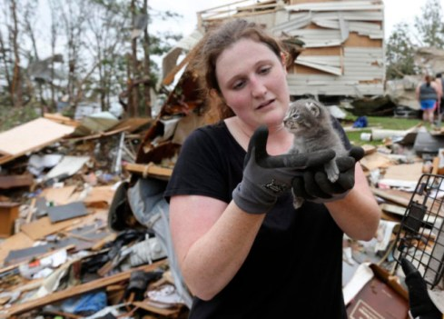 Maeghan Hadley, of One Day Ranch pet rescue, checks over a kitten pulled from under the rubble of a mobile home destroyed by Sunday's tornado in the Steelman Estates Mobile Home Park, near Shawnee, Okla., Monday, May 20, 2013. Photo Credit: Sue Ogrocki / AP
