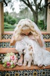 Wedding Day Dog