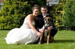 dog poses with couple in wedding photo