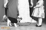 black and white photo girl with dog at wedding ceremony