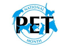 Celebrate National Pet Month this May with your loved one. Photo Credit:  National Pet Month
