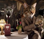two cats the great catsby gatsby spoof