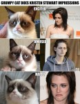 Grumpy Cat Kristen Stewart Impressions