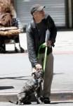jon stewart walking three-legged pet dog