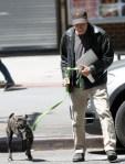 jon stewart walks pet dog
