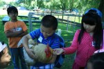 students with chicken at catskill animal sanctuary