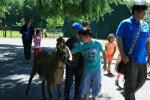 students meet goat at catskill animal sanctuary