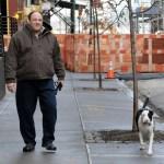 James Gandolfini walks his pit bull dog