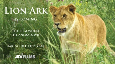 Look for Lion Ark to makes its public release over the next few months. Photo Credit: Facebook