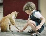 Girl And Cat Bonding