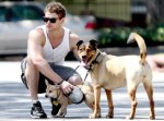 kellan lutz with dogs