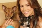 Alyssa Milano with dogs