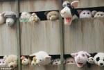 Banksy's New York Farm Animal Art