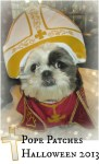 pope patches halloween costume