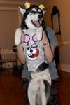 Miley Cyrus Dog Halloween Costume