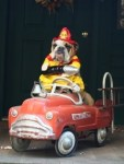 Sophie bulldog firefighter, pet dog halloween costume