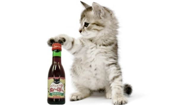 A Japanese pet supplement company, B&H Lifes, released a wine designed for kitty-safe consumption. Photo Credit: kotaku.com