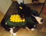 corn dog halloween costume