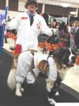 dog wearing baseball catcher halloween pet costume