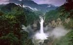 yasuni ecuador national park