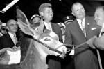 Donkey Kennedy