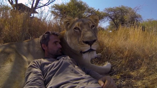 Kevin Richardson is raising awareness about the diminishing numbers of lions.